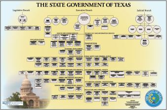 State Government of Texas Chart (IT Professionals)